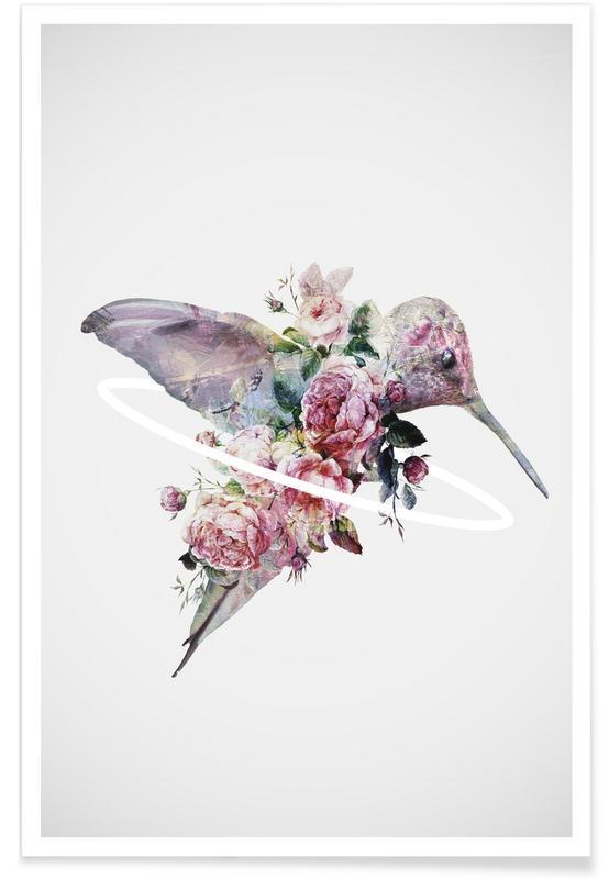 Colibris, Kolibri affiche