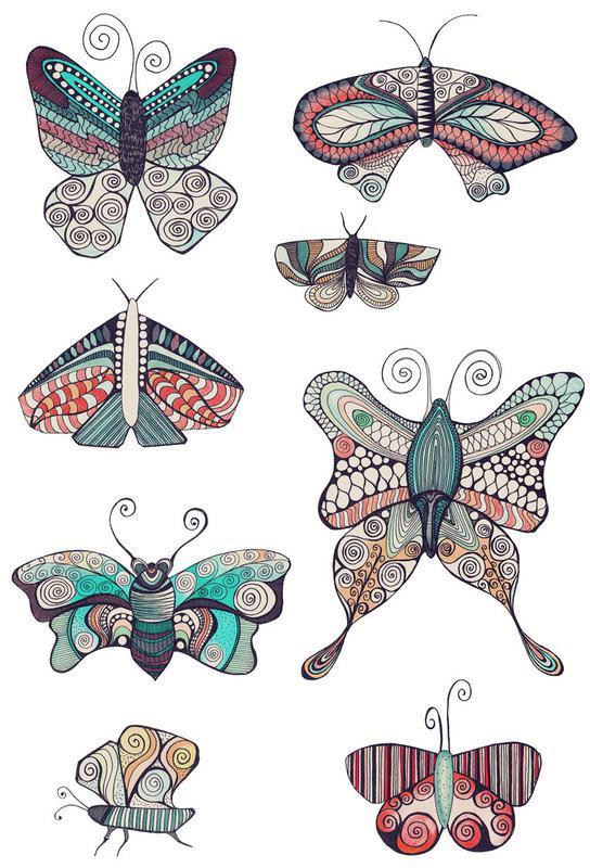 Schmetterling acrylglas print