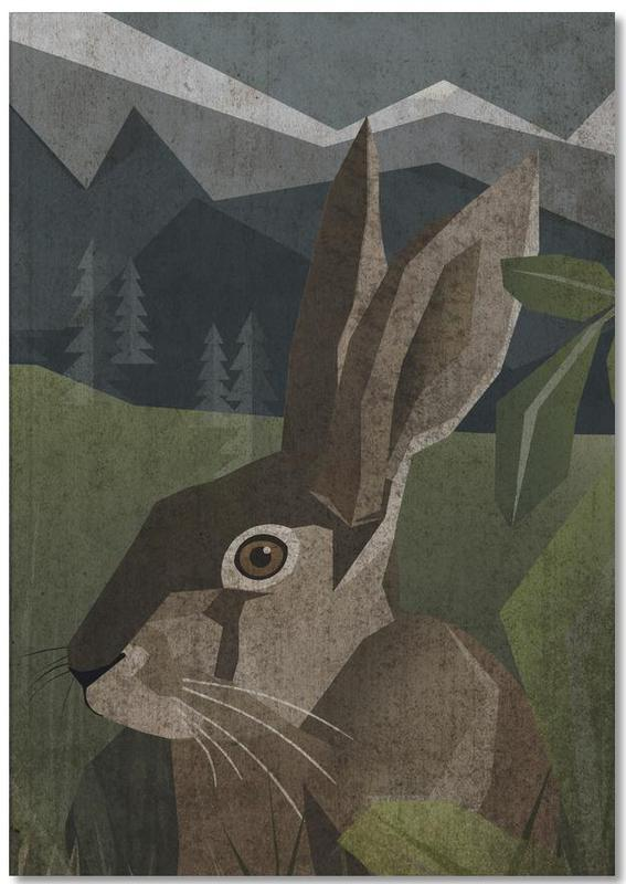 Hase Notebook
