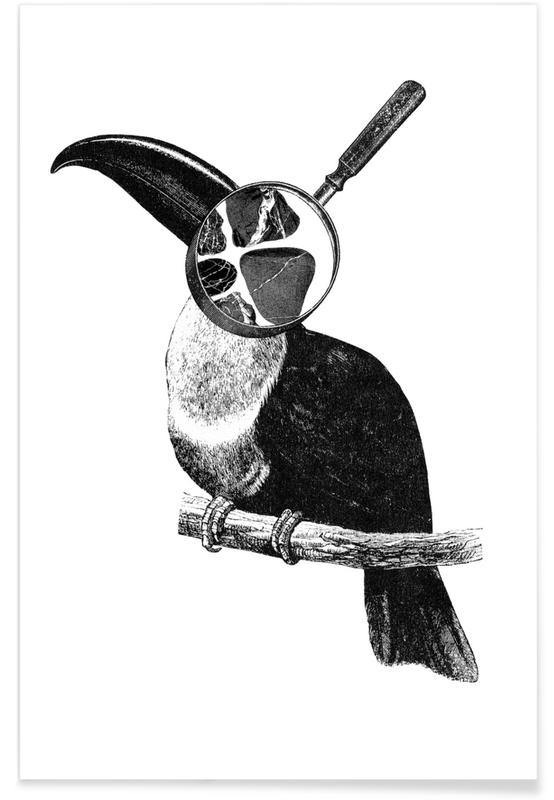 Noir & blanc, Toucans, Loeping Good (Bird) affiche