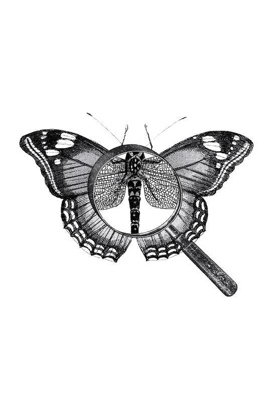 Loeping Good (Butterfly) Aluminium Print