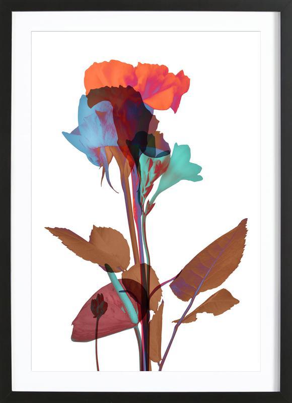 Ode aux Fleurs (Orange-Blue-Mint) ingelijste print