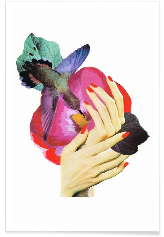 Schmetterlinge, Traumwelt, Het recht mooi te zijn - Bird -Poster