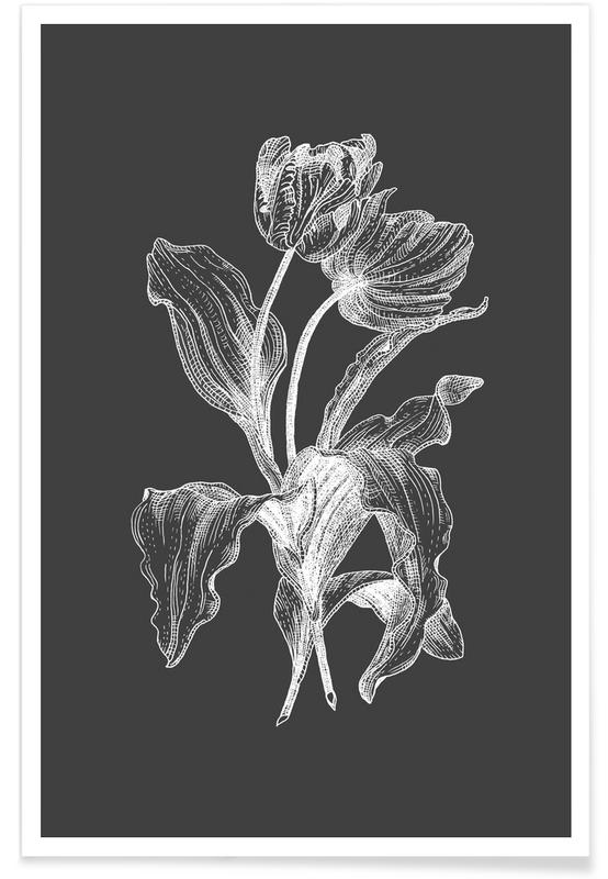 Rétro, Noir & blanc, Tulipes, Tulipes - Croquis au crayon affiche