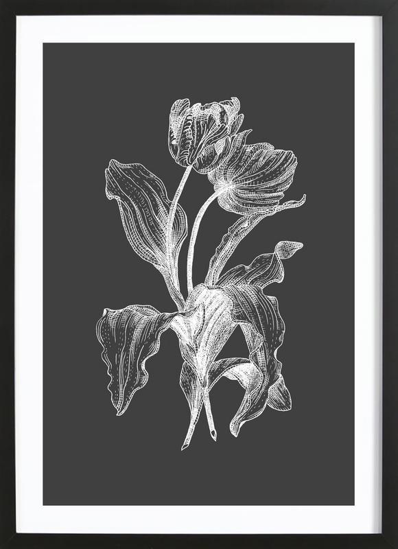 Tulips - White on Grey -Bild mit Holzrahmen