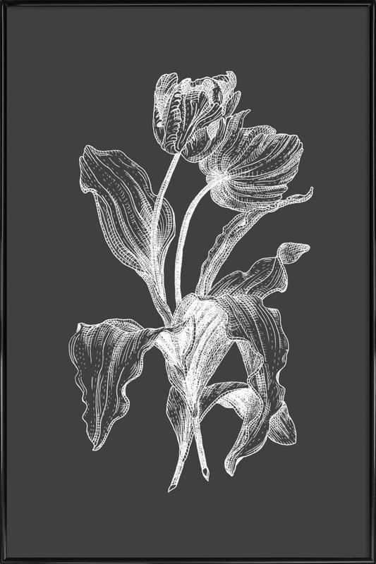 Tulips - White on Grey Framed Poster