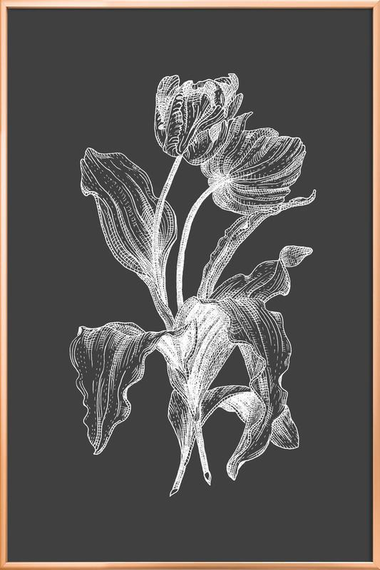 Tulips - White on Grey Poster in Aluminium Frame