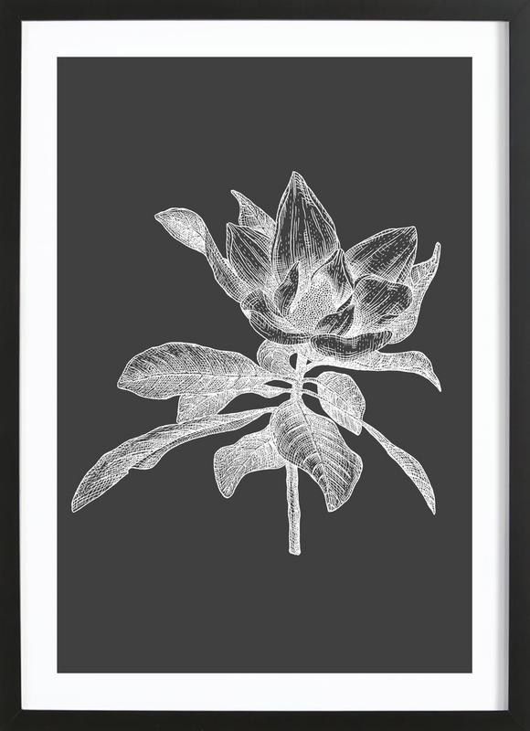 Magnolia - White on Grey Framed Print