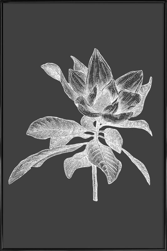 Magnolia - White on Grey -Bild mit Kunststoffrahmen