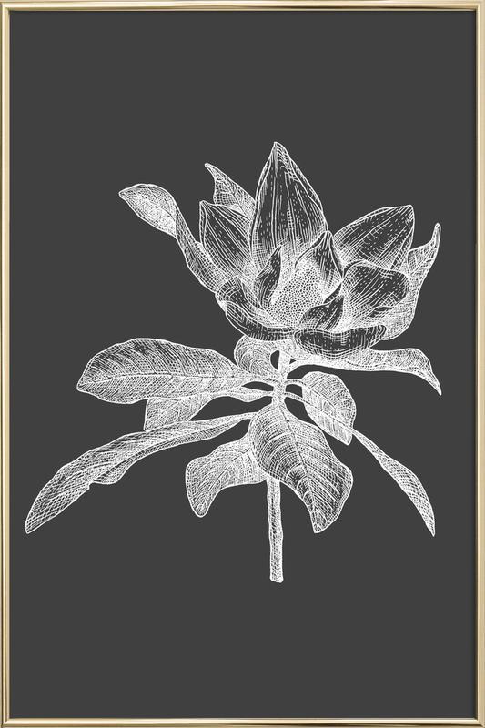 Magnolia - White on Grey Poster in Aluminium Frame