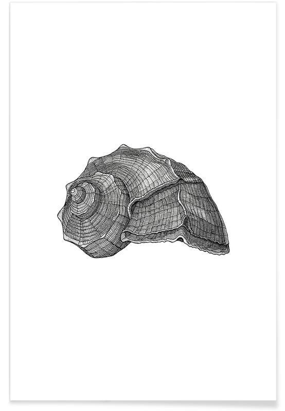 Schwarz & Weiß, Retro, Muschel-Bleistiftskizze -Poster