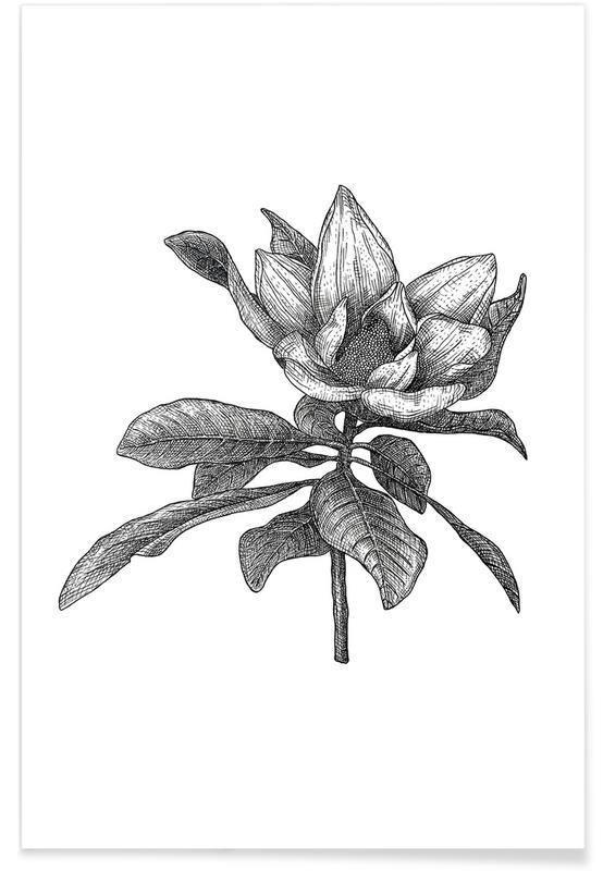Schwarz & Weiß, Retro, Magnolie-Bleistiftskizze -Poster
