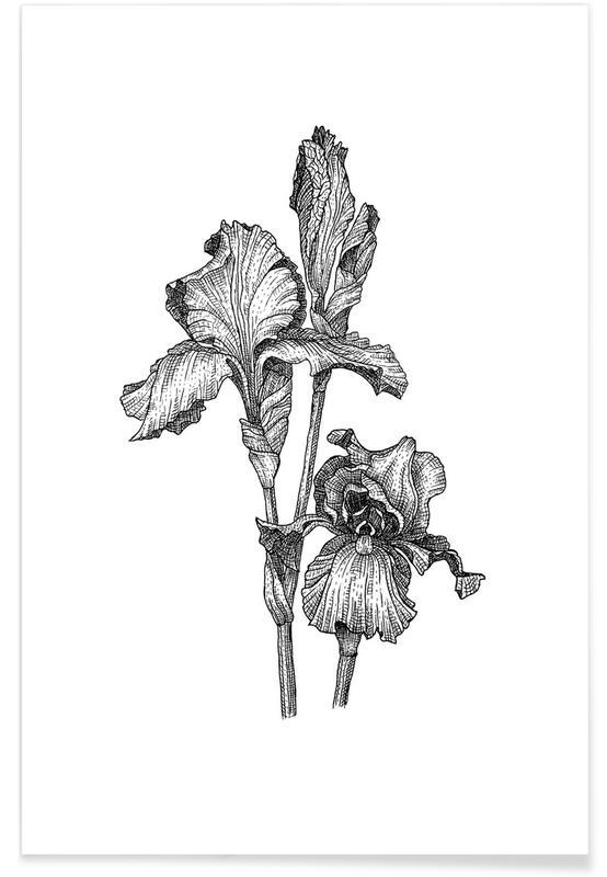 Schwarz & Weiß, Retro, Orchideen-Bleistiftskizze -Poster