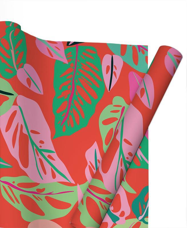 Feuilles & Plantes, Monstera Obliqua papier cadeau