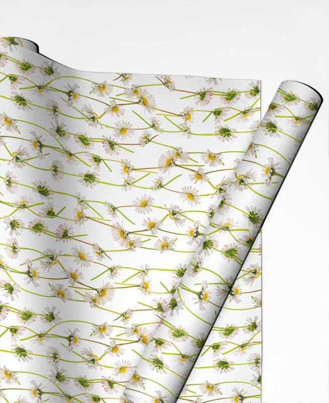 Patterns, Daisies, Daisy Gift Wrap
