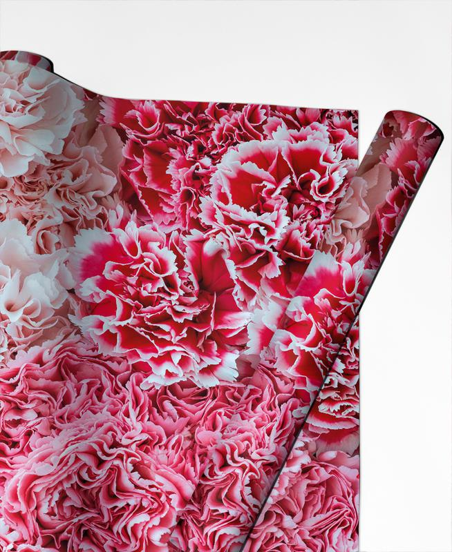 Carnation Flower Gift Wrap