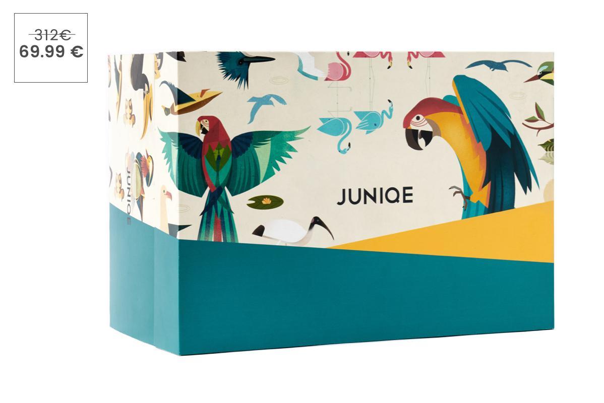 Tierwelten Entdecker-Box – 24 Poster