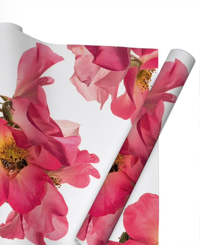 Flora - Rose 2 -Geschenkpapier