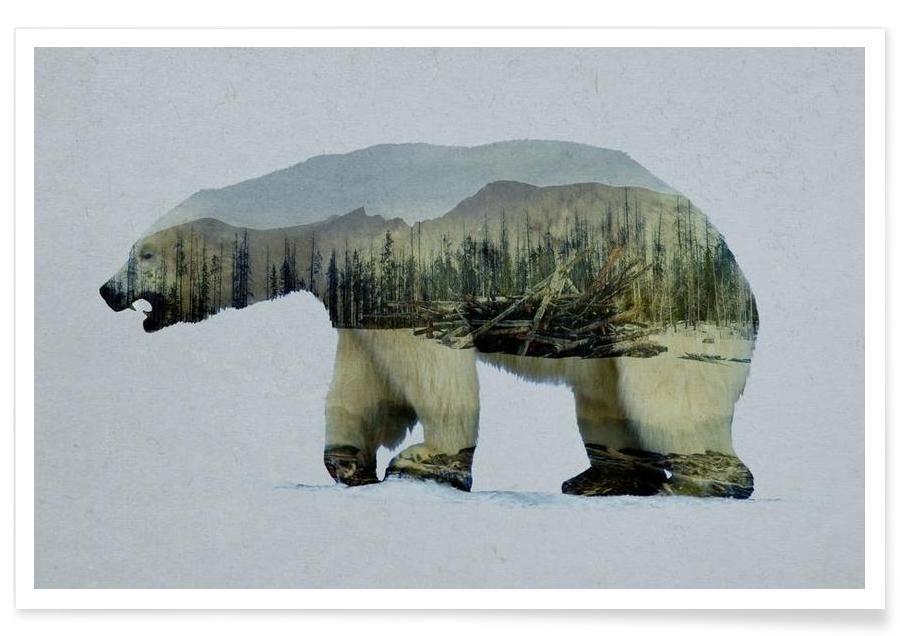 The Arctic Polar Bear -Poster