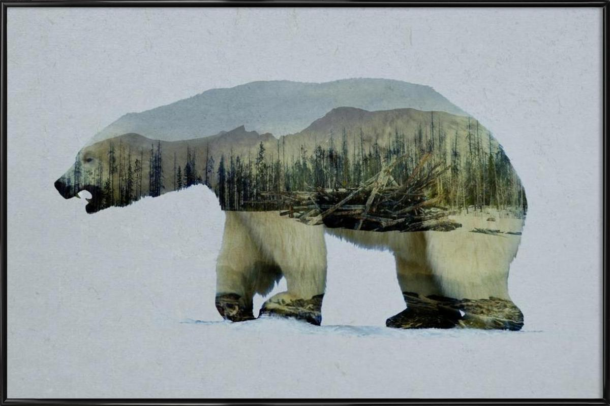 The Arctic Polar Bear ingelijste poster