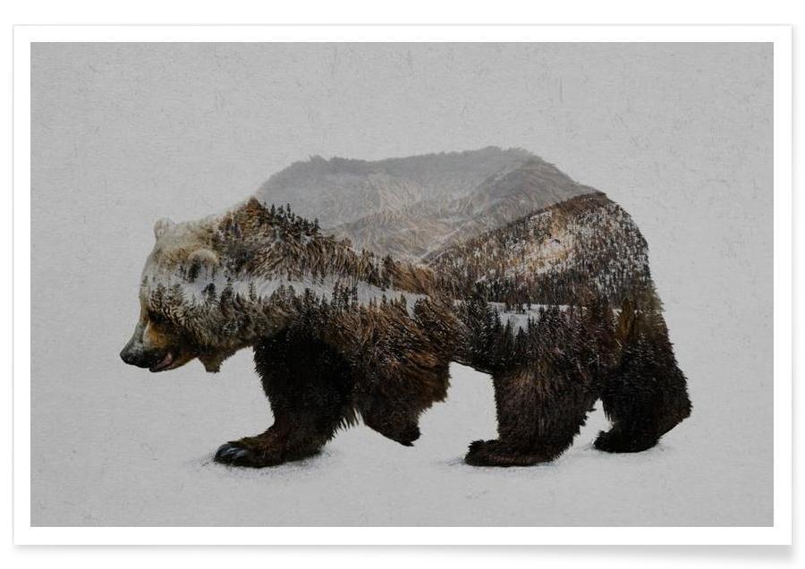 Ours, The Kodiak Brown Bear affiche