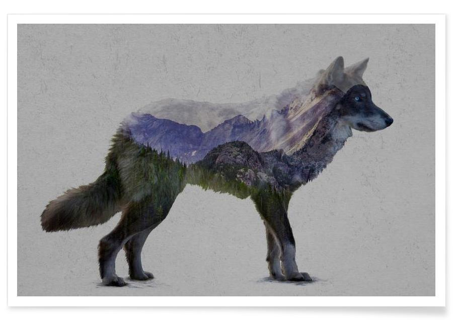 The Rocky Mountain Gray Wolf affiche