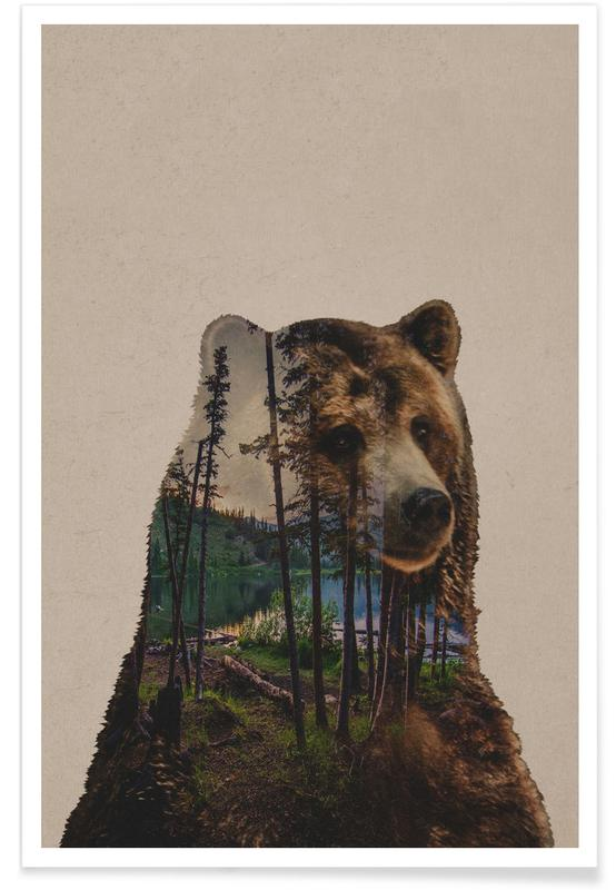 Ours, Forêts, Bear Lake affiche