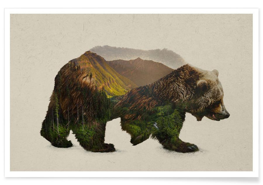 Ours, Art pour enfants, North American Brown Bear affiche