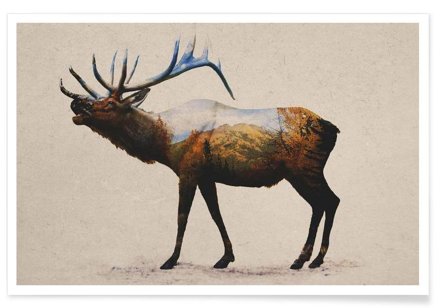 The Rocky Mountain Elk -Poster