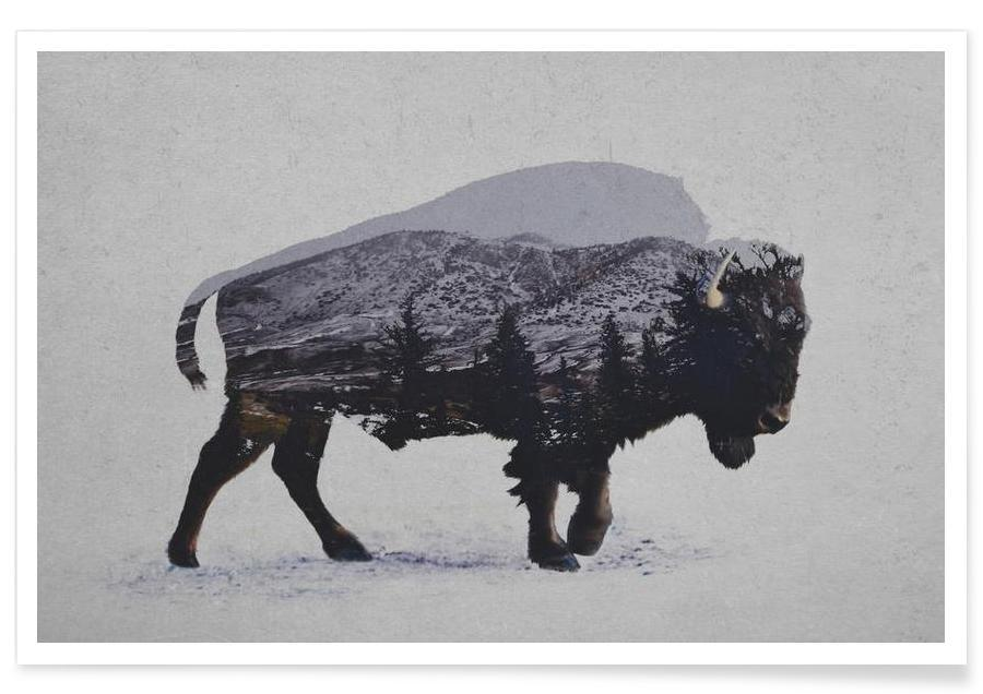The American Bison -Poster