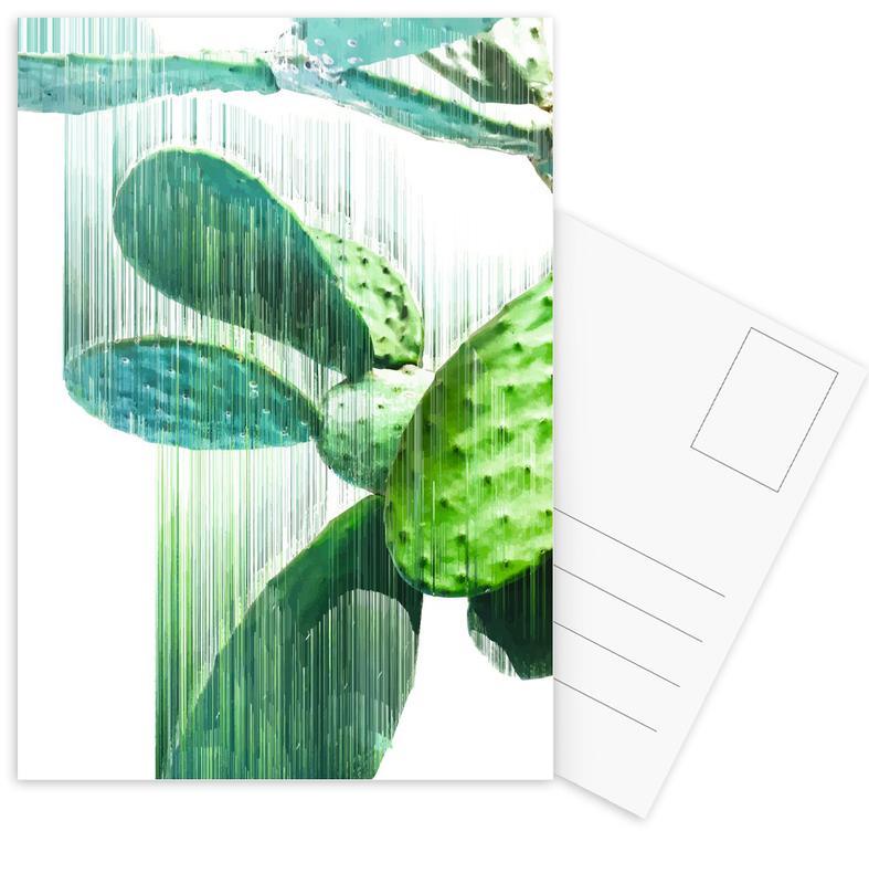 The Speed Of Cactus Postcard Set