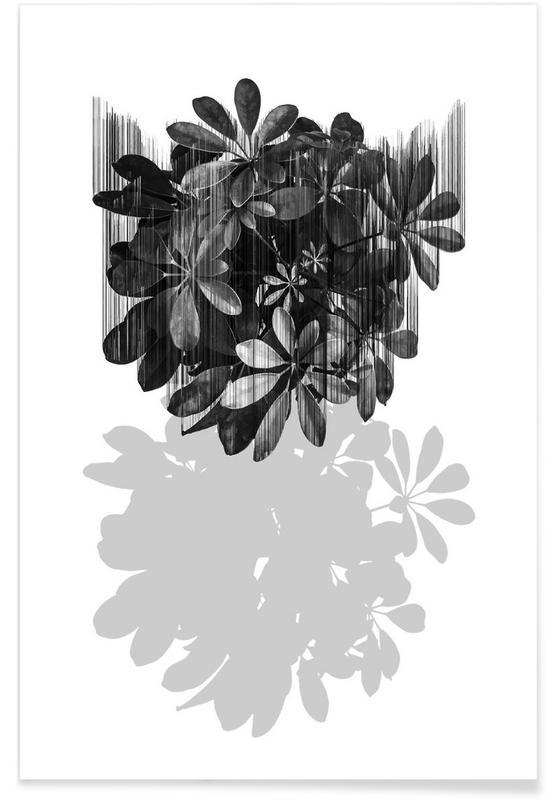 Noir & blanc, Feuilles & Plantes, No Parachutes For Plants affiche