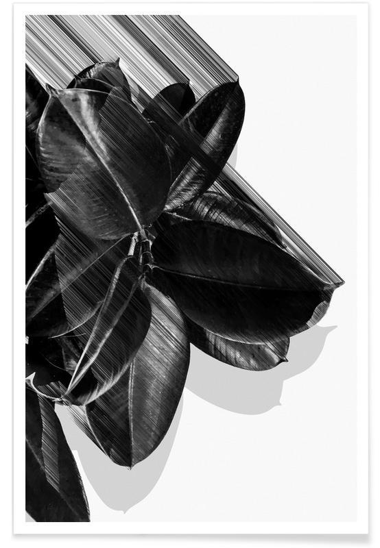 Zwart en wit, Bladeren en planten, We Crush poster