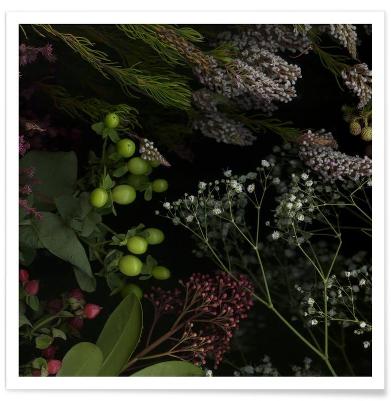 Feuilles & Plantes, Flora I affiche