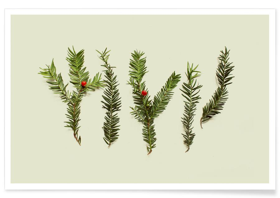 Christmas, Leaves & Plants, COMPOSIZIONE FOGLIE III Poster