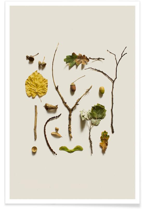 Leaves & Plants, COMPOSIZIONE FOGLIE V Poster