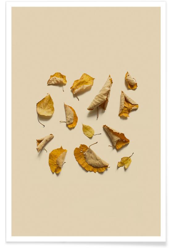 Leaves & Plants, COMPOSIZIONE FOGLIE VI Poster