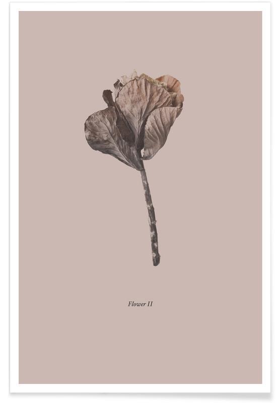 Leaves & Plants, Botanico II Poster