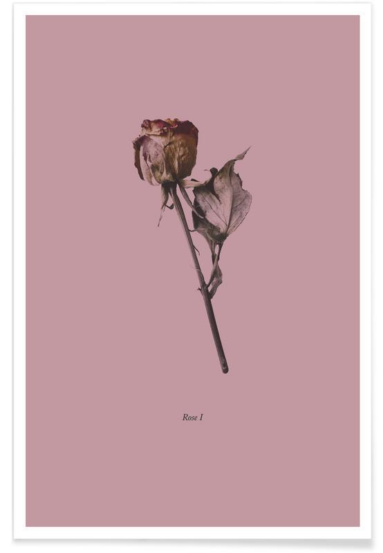 Roses, Botanico III Poster