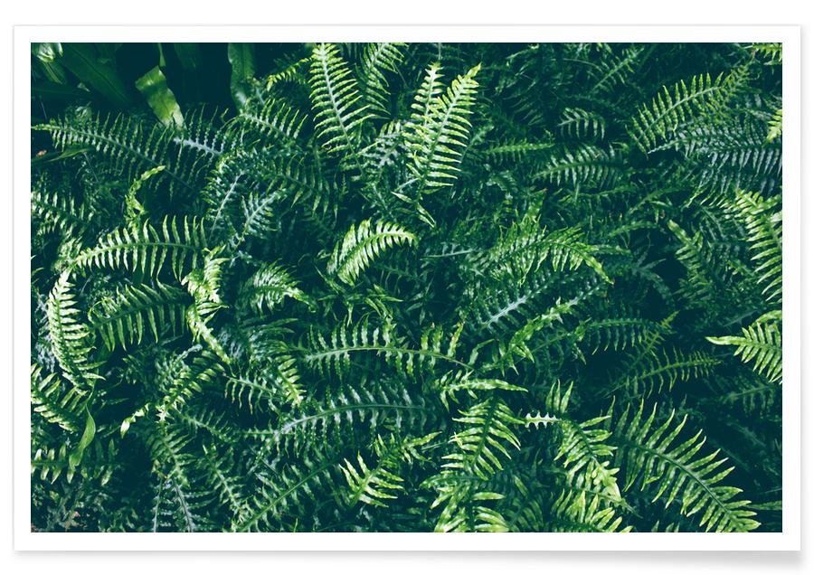 Leaves & Plants, Leaves I Poster
