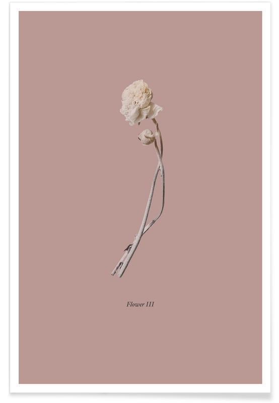 , Botanico IV Poster