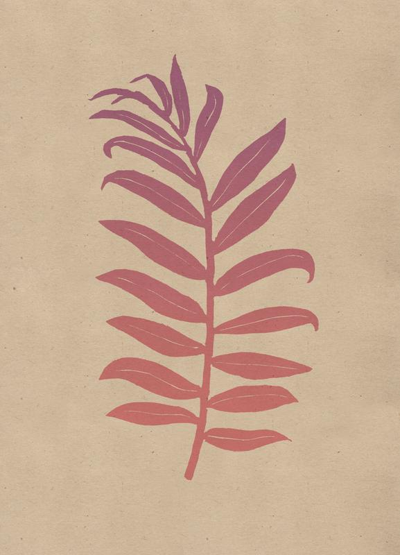 Areca Palmata Pinktide -Leinwandbild
