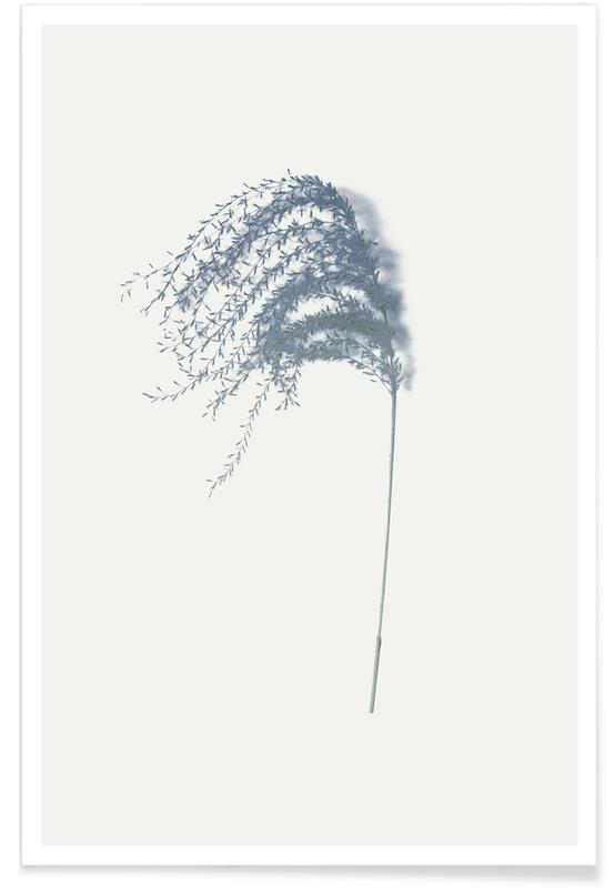 Leaves & Plants, Spike I Poster