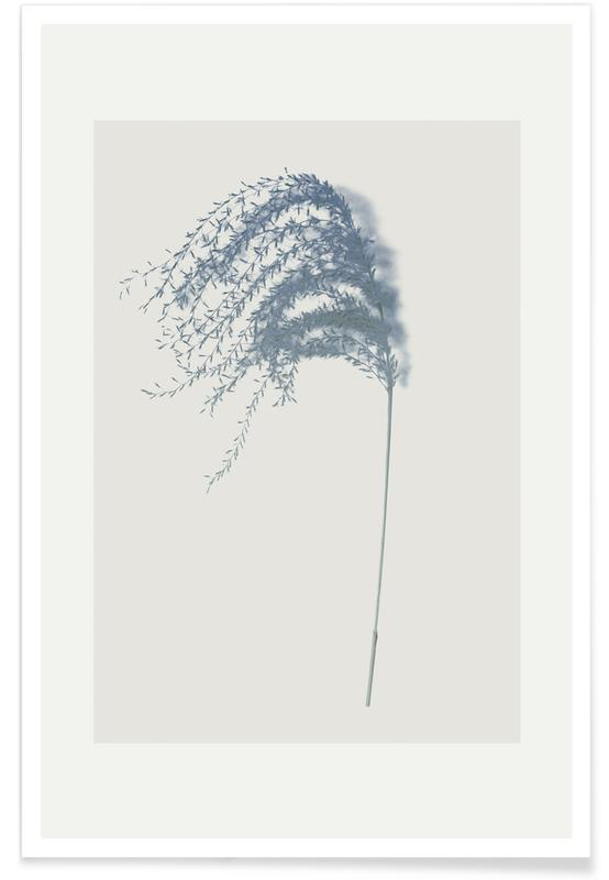 Leaves & Plants, Spike II Poster