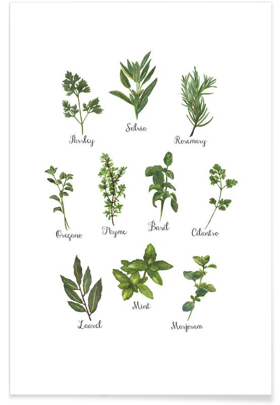 Herbs Collection affiche