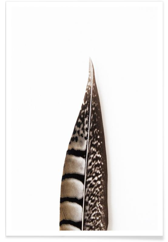 Feathers, One Feather Poster