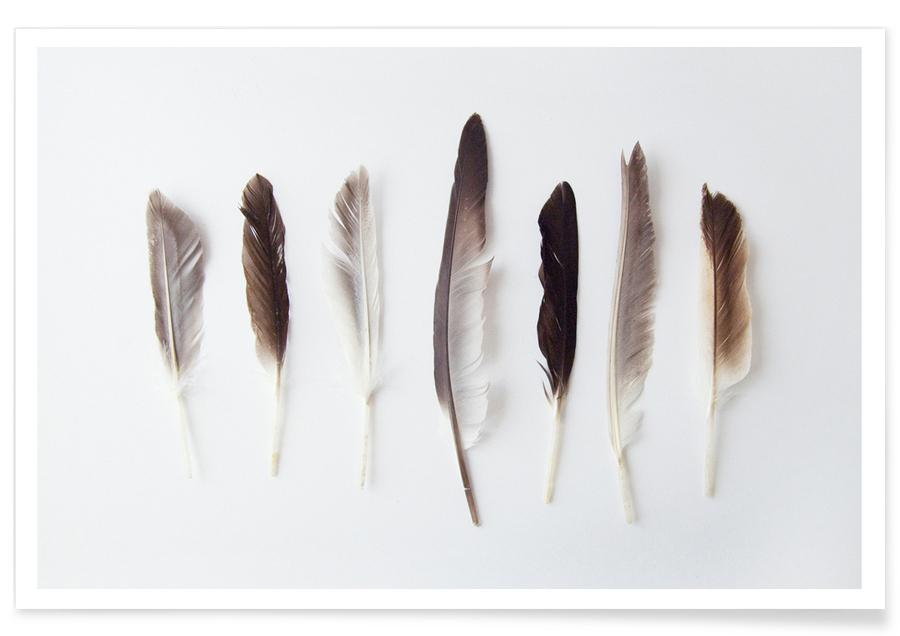 Feathers, Autumn Feathers Poster