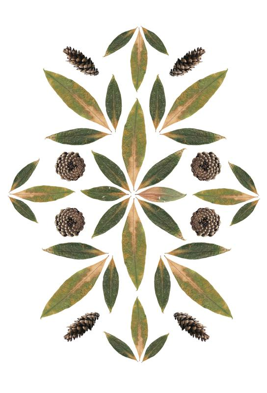 Pinecones and Leaves -Alubild