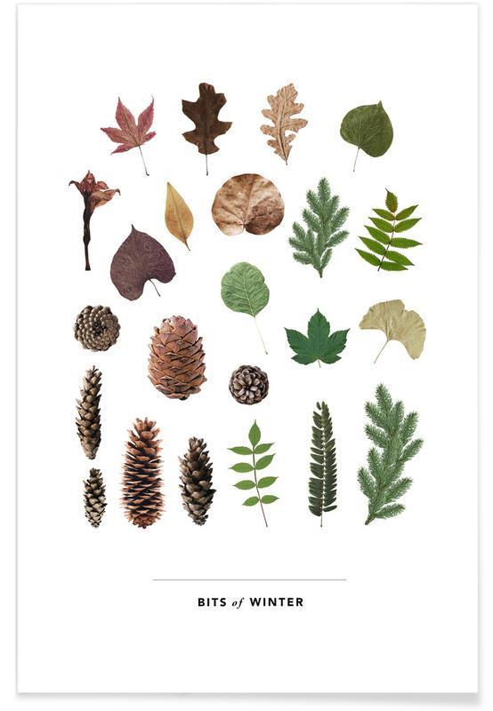 Bladeren en planten, Bits of Winter poster
