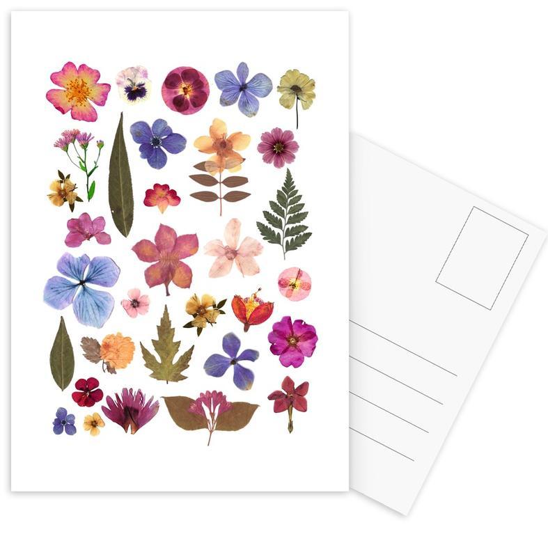 Pressed Flowers 01 Postcard Set
